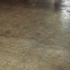 A Concrete Floor is a Renewable Resource